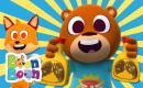 Ursulețul lacom - Cântece educative cu animale pentru copii | BoonBoon